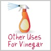 other uses for vinegar