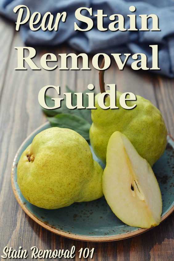 Step by step instructions for pear stain removal from clothing, upholstery and carpet {on Stain Removal 101}