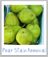 pear stains