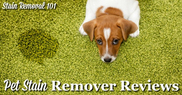 Here is a round up of pet stain removers reviews, to find out which products work best to remove all types of stains from cats, dogs and other pets, from both hard surfaces and fabrics and fiber {on Stain Removal 101}