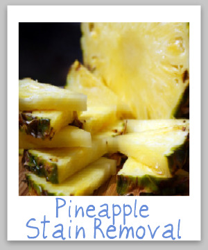 Pineapple stain removal guide for clothing, upholstery and carpet, with step by step instructions {on Stain Removal 101}