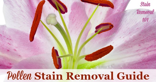 Step by step instructions for pollen stain removal from clothing, upholstery and carpet so you can enjoy your flowers without fear of a mess {on Stain Removal 101}
