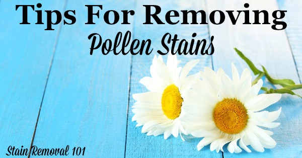 Here is a round up of tips for how to remove pollen stains from many types of items in and around your home, including clothes, carpet, hard surfaces and more {from Stain Removal 101} #StainRemoval #RemoveStains #RemovingStains