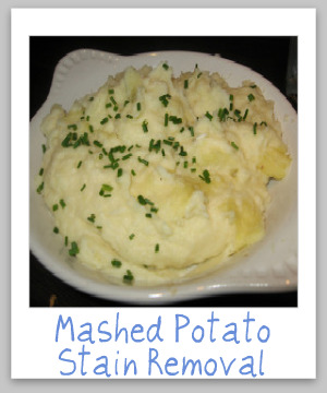 How to remove mashed potato stains from clothing, upholstery and carpet, with step by step instructions {on Stain Removal 101}