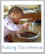pudding stains