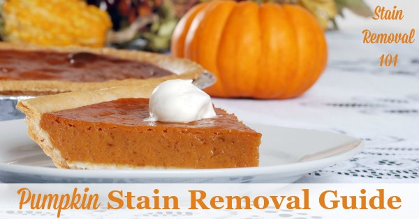 Pumpkin stain removal guide for clothing, upholstery and carpet, with step by step instructions {on Stain Removal 101}