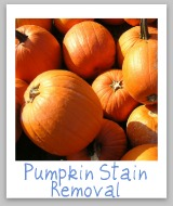 pumpkin stain removal
