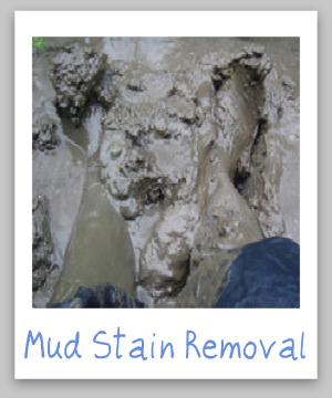 How to remove mud stains from clothes, upholstery and carpet, with step by step instructions {on Stain Removal 101}