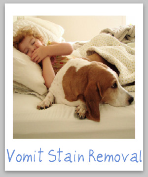 How to remove vomit stains from clothes, upholstery and carpet {on Stain Removal 101}