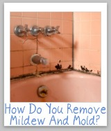 tips for removing mildew and mold