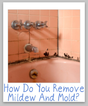 Tips For Cleaning Removing Mildew Mold From Hard Surfaces