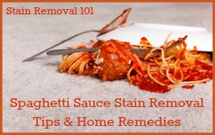 How to remove spaghetti stains on carpet
