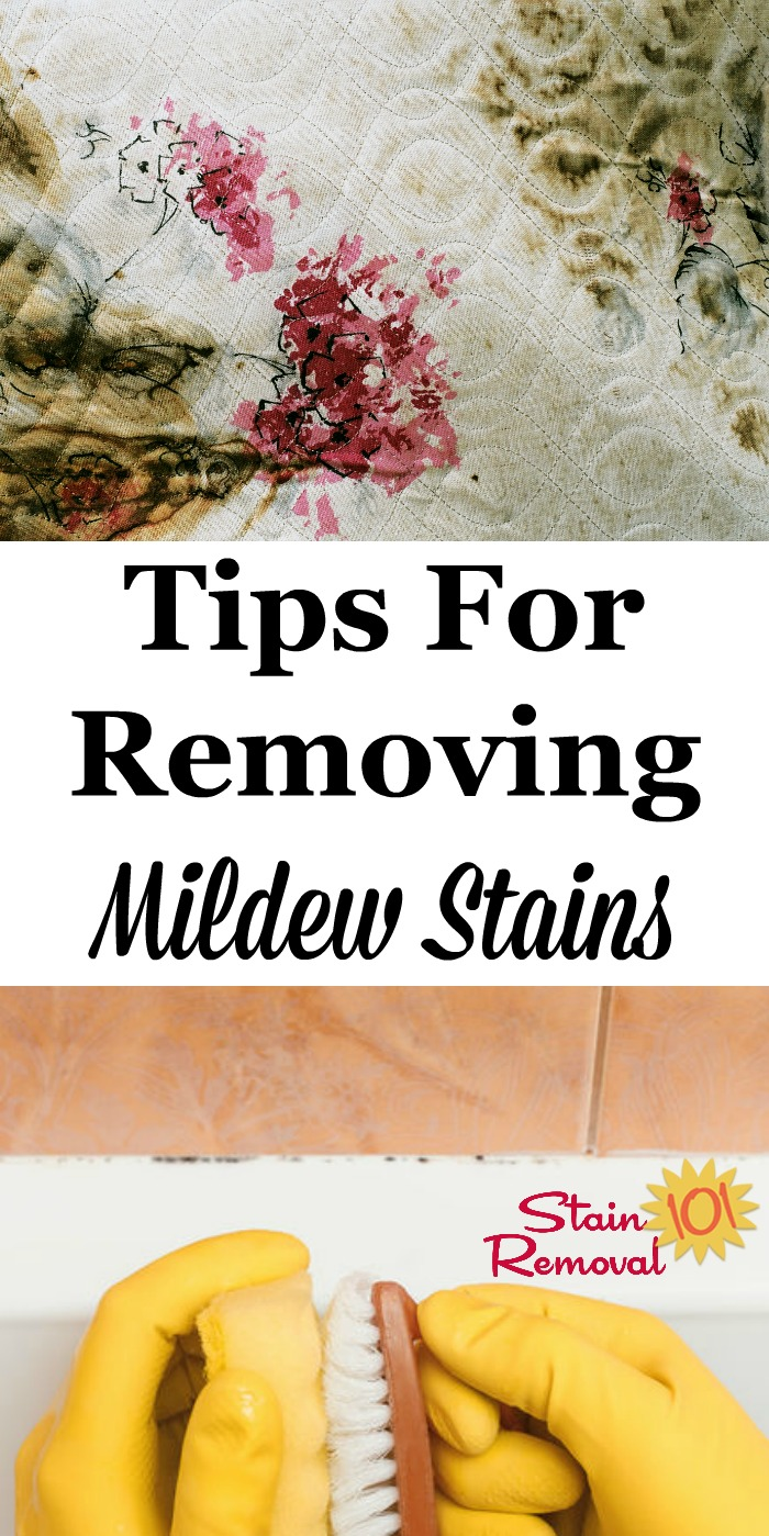 Here is a round up of stain removal mildew tips for fabric, upholstery and carpeting surfaces, and more. Get ideas for how to remove mildew stains and smells, since they often linger {on Stain Removal 101} #StainRemoval #CleaningTips #RemoveStains