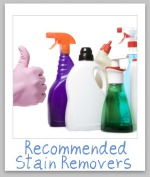 recommended stain removers