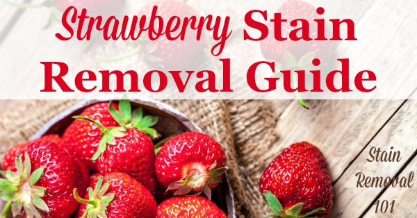 Strawberry stain removal guide for clothing, upholstery and carpet, with step by step instructions {on Stain Removal 101}