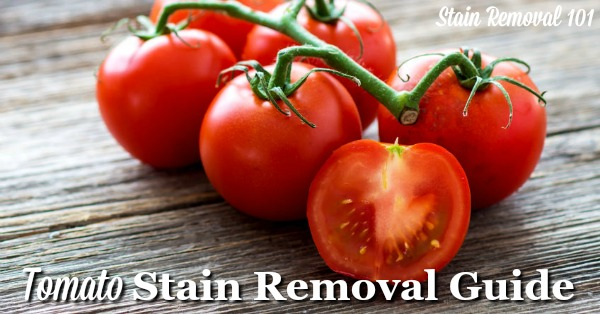 How to remove tomato stains of all varieties, including paste, sauce, soup, and juice, from clothing, upholstery, carpet and more, with step by step instructions {on Stain Removal 101}