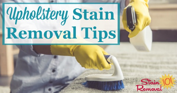 Here are upholstery stain removal tips for various types of stains, such as food and drink, berry, and grease and oil {on Stain Removal 101} #StainRemoval #UpholsteryCleaning #UpholsteryStains