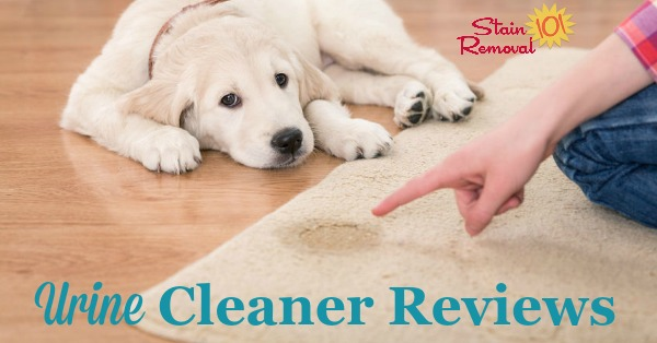 Here is a round up of reviews of urine cleaner and urine stain removers, to clean up both smells and stains on a variety of surfaces including on carpet, mattresses, clothes, and more {on Stain Removal 101}