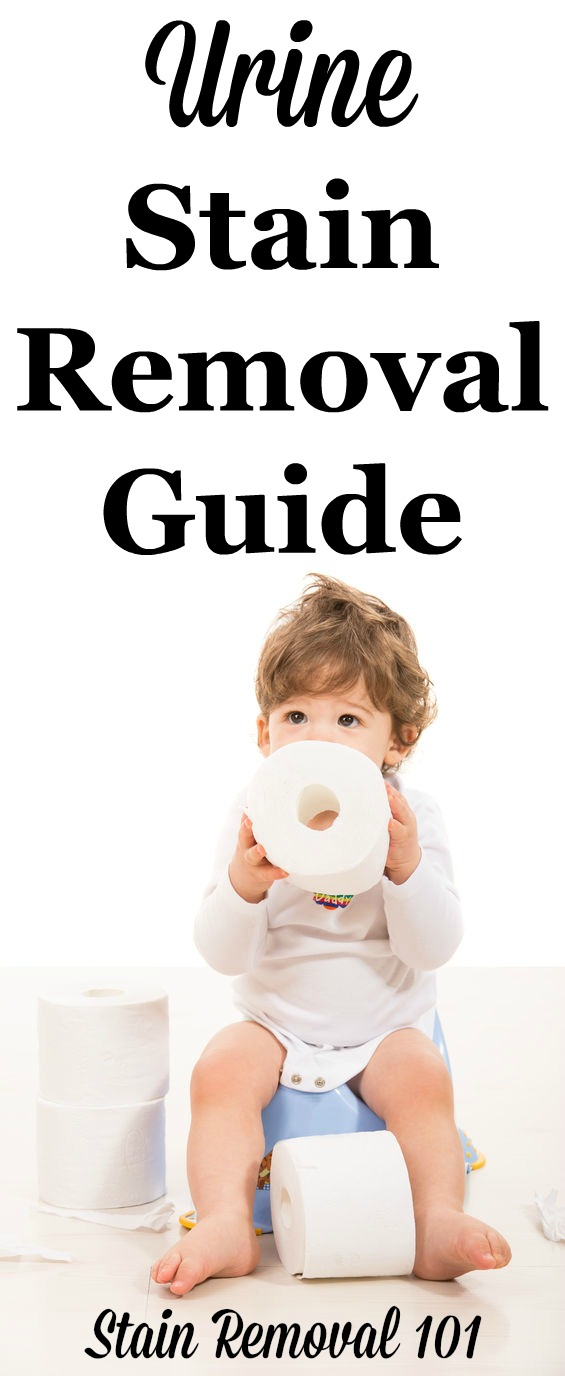 Urine stain removal guide to help you with those little (or big) accidents, with step by step instructions for clothes, upholstery, carpet, and mattresses {on Stain Removal 101}