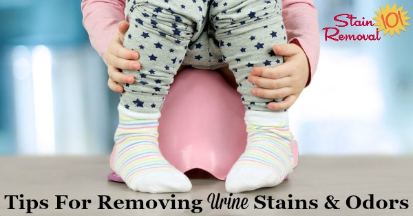 Here is a round up of tips for removing urine stains and odors from carpet, clothes, wood floors, or other household items {on Stain Removal 101} #UrineStains #UrineStainRemoval #StainRemoval