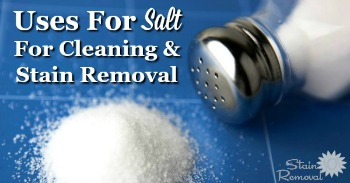 Uses for salt for cleaning and stain removal