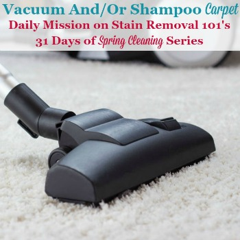 vacuum and/or shampoo carpet
