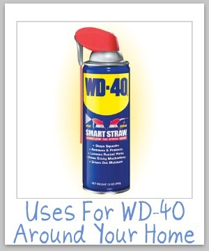 10+ ways to use WD-40 in and around your home for cleaning, stain removal and home maintenance {on Stain Removal 101}