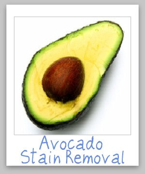 Step by step instructions for avocado stain removal from clothing, upholstery and carpet {on Stain Removal 101}