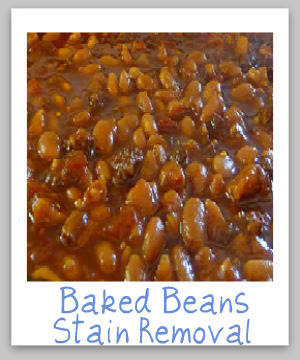How to remove baked beans stains from clothing, upholstery and carpet, with step by step instructions {on Stain Removal 101}