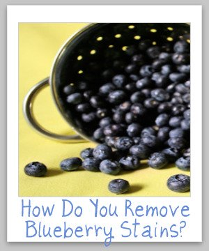 blue berry stain removal