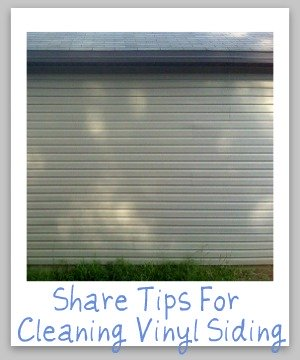 Cleaning Vinyl Siding Tips And Instructions