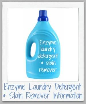 How Enzyme Laundry Detergent And Stain Removers Work To Remove Stains Get Clothes Clean