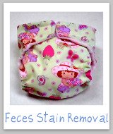 feces stain removal