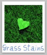 grass stains removal