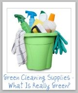 what's really a green cleaning supply