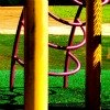 grass on playground