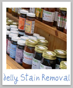 Jelly stain removal guide, with step by step instructions for removing spots and spills on clothing, upholstery and carpet {on Stain Removal 101}