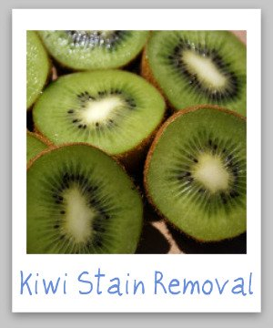 Kiwi stain removal guide, with step by step instructions for removing kiwi juice stains from clothing, upholstery and carpet {on Stain Removal 101}