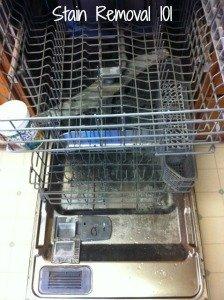 inside dishwasher after using Lemi Shine pacs for week