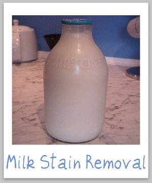 Milk stain removal guide for clothing, upholstery and carpet {on Stain Removal 101}