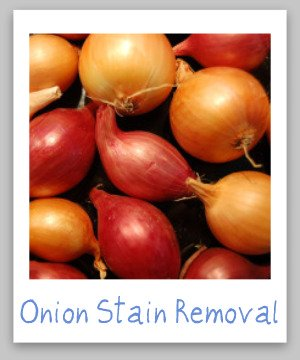 Onion Stain Removal Guide