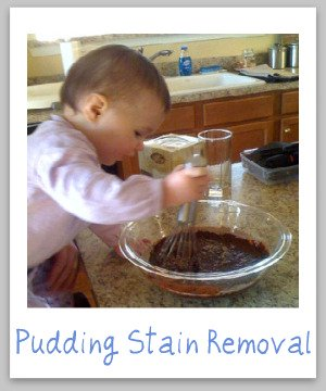 How to remove pudding stains from clothing, upholstery and carpet, with step by step instructions {on Stain Removal 101}