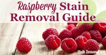 Raspberry stain removal guide