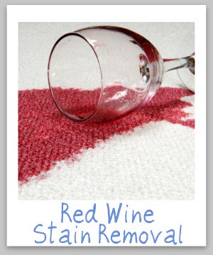 Red wine stain removal guide for clothing, upolstery and carpet {on Stain Removal 101}