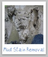 removing mud stains