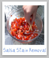 stain removal salsa