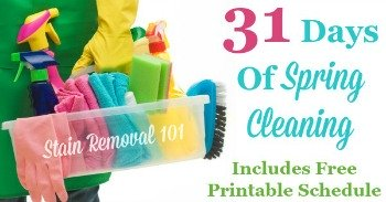 31 days of spring cleaning series