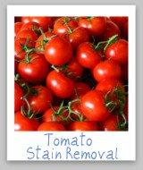 tomato stain