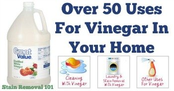 Over 50 uses for vinegar in your home