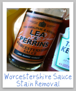 How to remove a worcestershire sauce stain from clothing, upholstery or carpet, with step by step instructions {on Stain Removal 101}